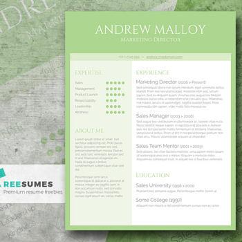 creative resume template freebie