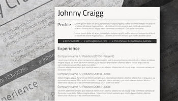 professional clean a basic but stylish resume layout