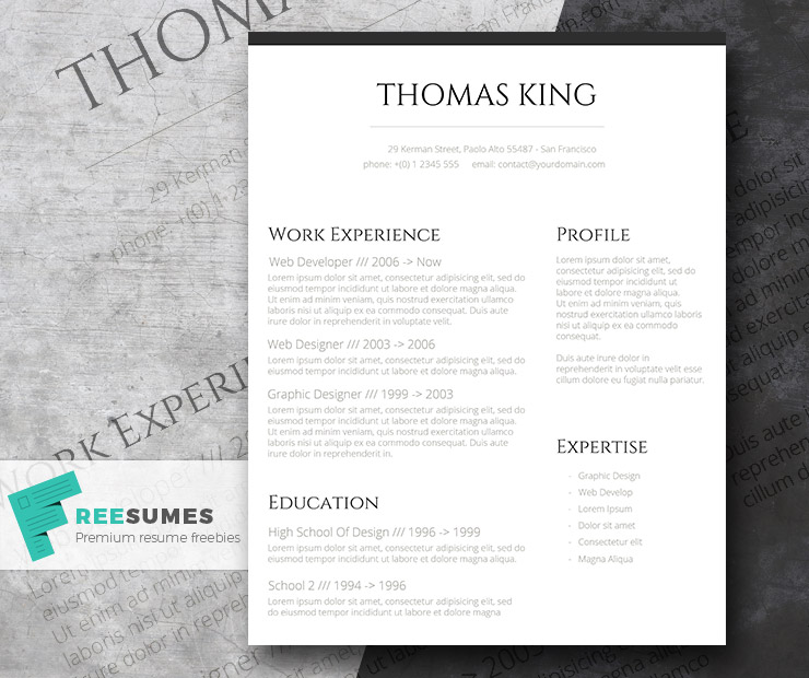 Professional Clean – A Basic but Stylish Resume Layout - Freesumes
