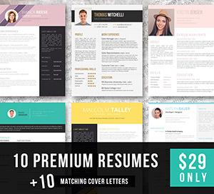 premium resume bundle