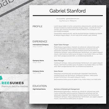 sleek and simple resume