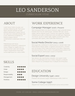 conservative creative cv layout