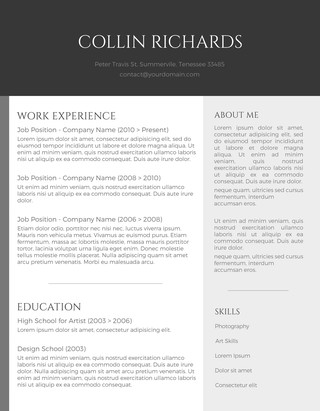 Plain but Trendy Curriculum Vitae