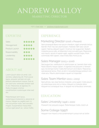 Simple Green CV Design