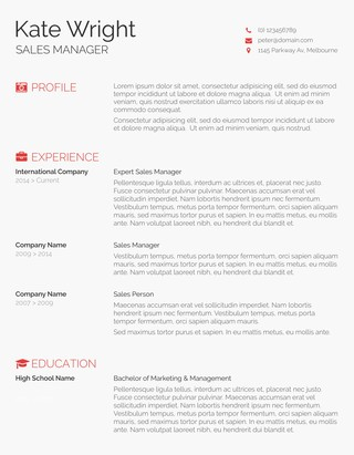 Free Resume Templates For Ms Word  FreesumesCom