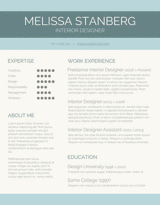 Beautiful Modern Day Candidate CV