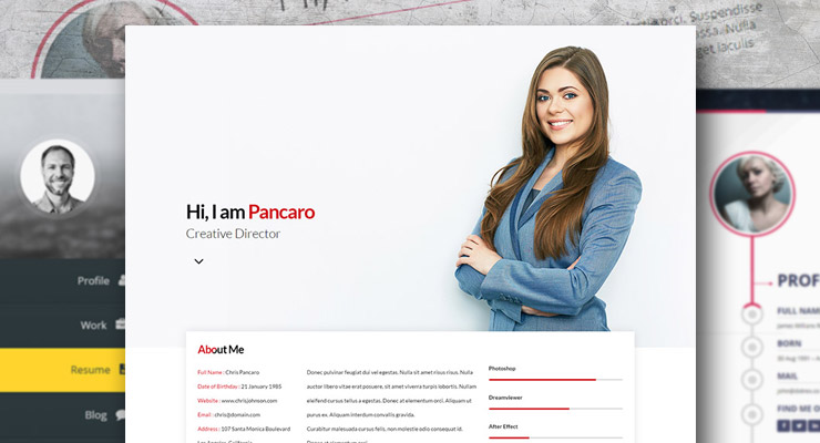 15 Best WordPress Resume CV Themes Freesumescom