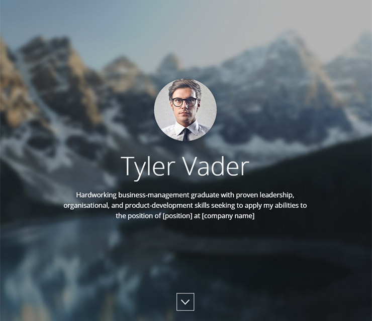 Tyler CV Resume Template