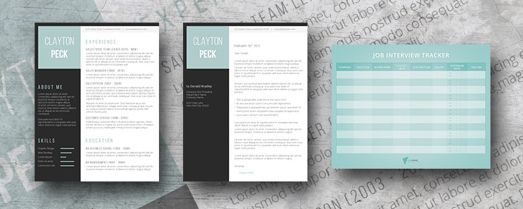 arctic sleek resume pack