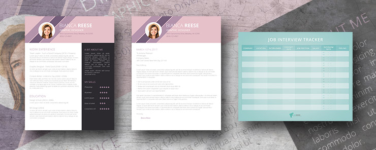 ingenious origianl resume pack