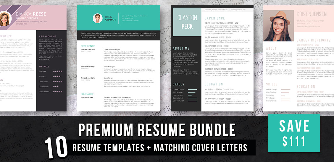 premium resume bundle