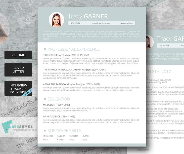 premium resume set