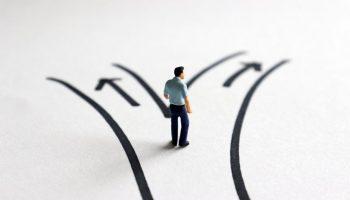 find career path