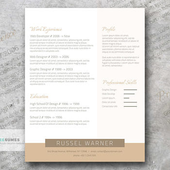 simple yet original resume