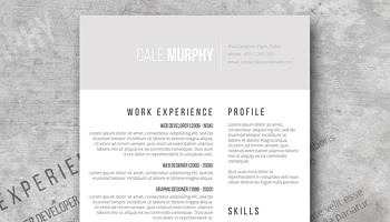 Free Creative Resume Design Smart and Professional