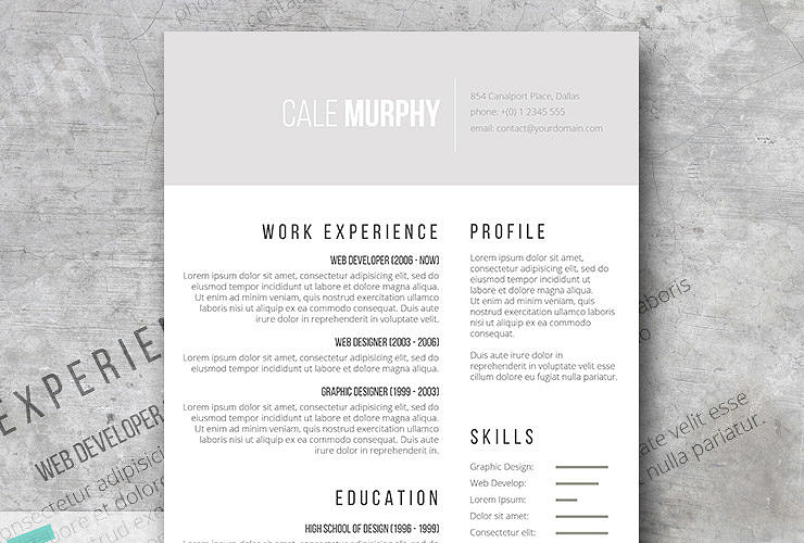 free minimalist cv template shades of gray - Classy Resume Template