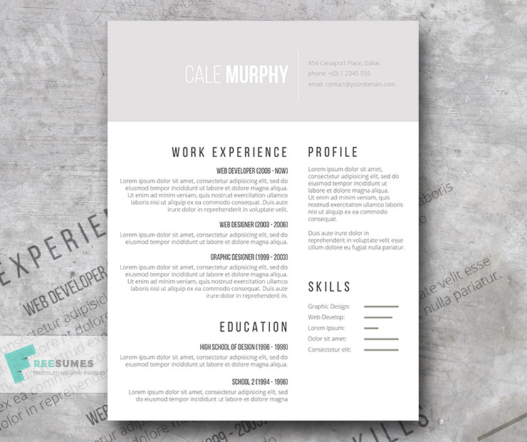 free minimalist cv template shades of gray - Minimalist Resume Template
