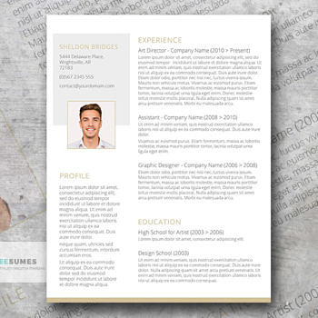 clean and classy resume template