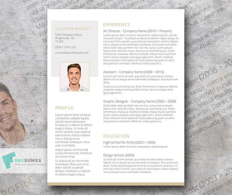 clean and classy  u2013 a free and elegant resume design