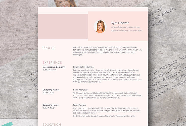 Free modern resume templates modern pink resume design misty rose thecheapjerseys Images