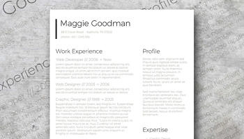 classic sleek resume design