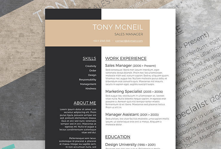 elegant resumes - Leon.escapers.co