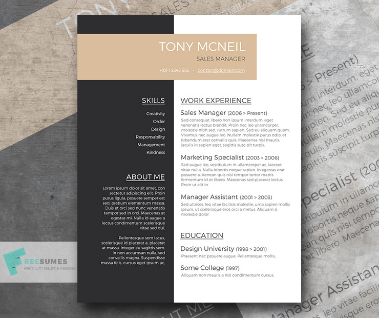 free professional resume sample
