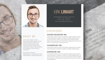 clean headshot professional resume
