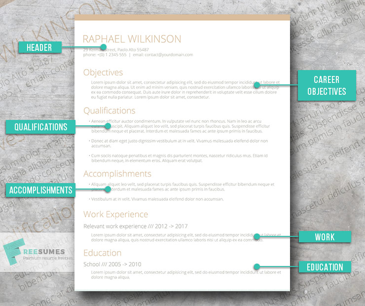 top 3 resume formats you should be using to land your dream job