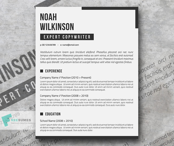 newspaper resume theme