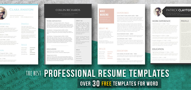 Professional Resume Templates Ideal For A White Collar Job Freesumes