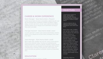 soft and clean resume