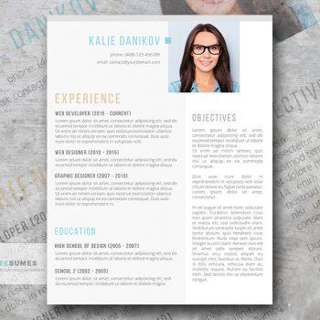free modern clean resume