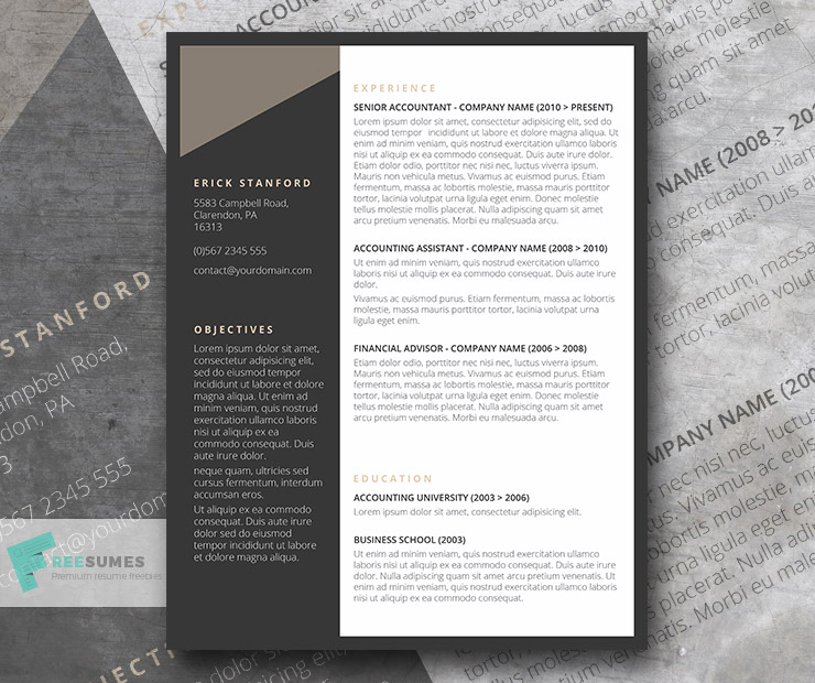 The Executive Grey Resume Template Freebie Freesumes