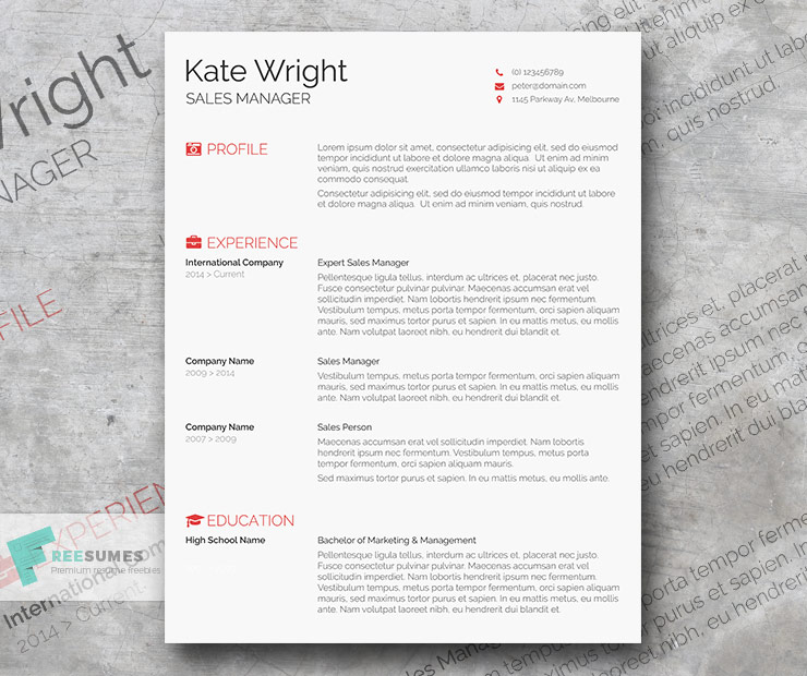 the minimalist resume template