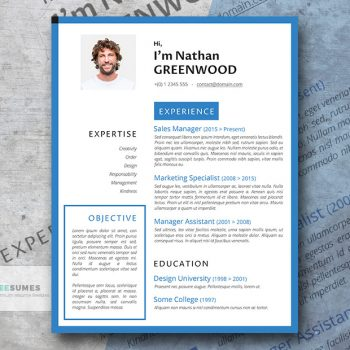 level up free resume download