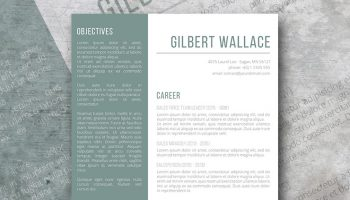 green granite resume