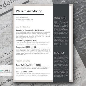 the efficient layout resume
