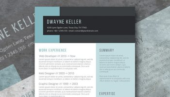 equilibrium resume layout free