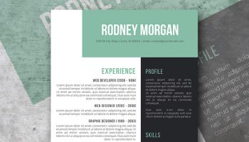 the green experience resume