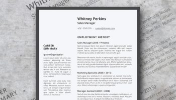 minimalisticlean resume template