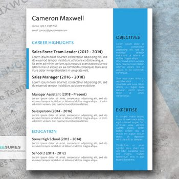the strategist resume template