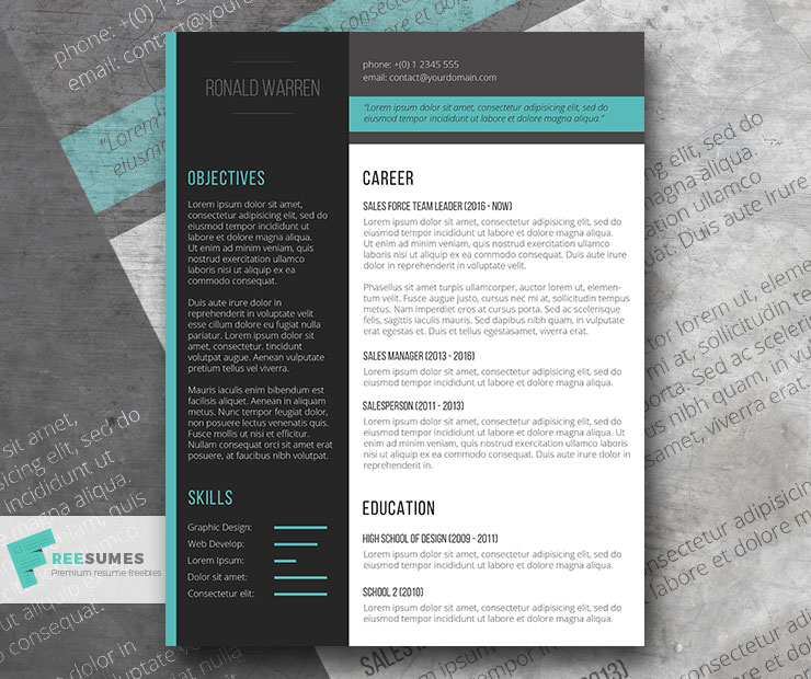 the smart flow resume template