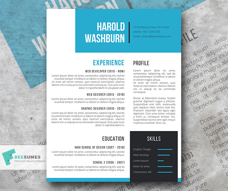 the visionaire resume template
