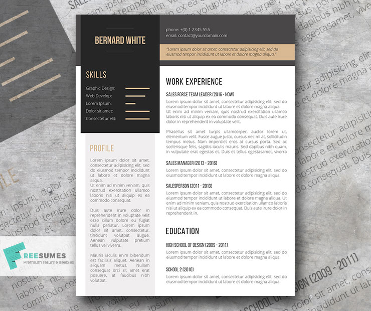 simplexing resume template