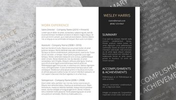 the accomplish academic resume template