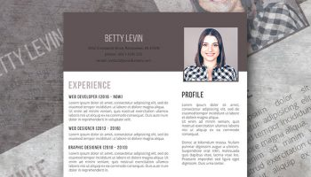 the personal branding resume template