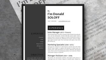 the classic pro resume template