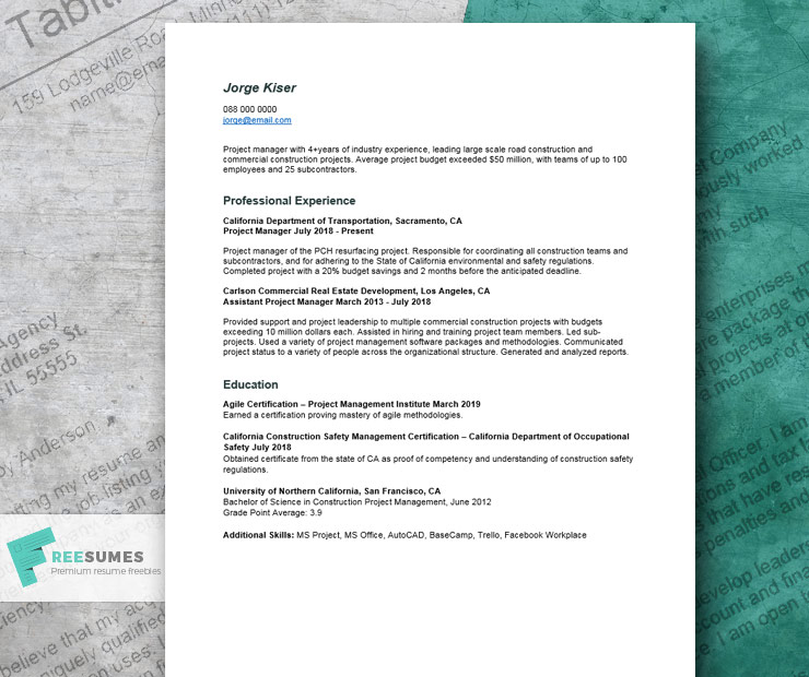 resume example for project manager