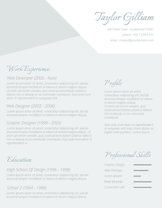 The Intelligent Applicant Resume Template